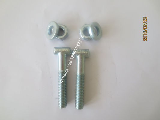 China T bolt scaffolding components Electrogalvanized or HDG FOR scaffold coupler supplier